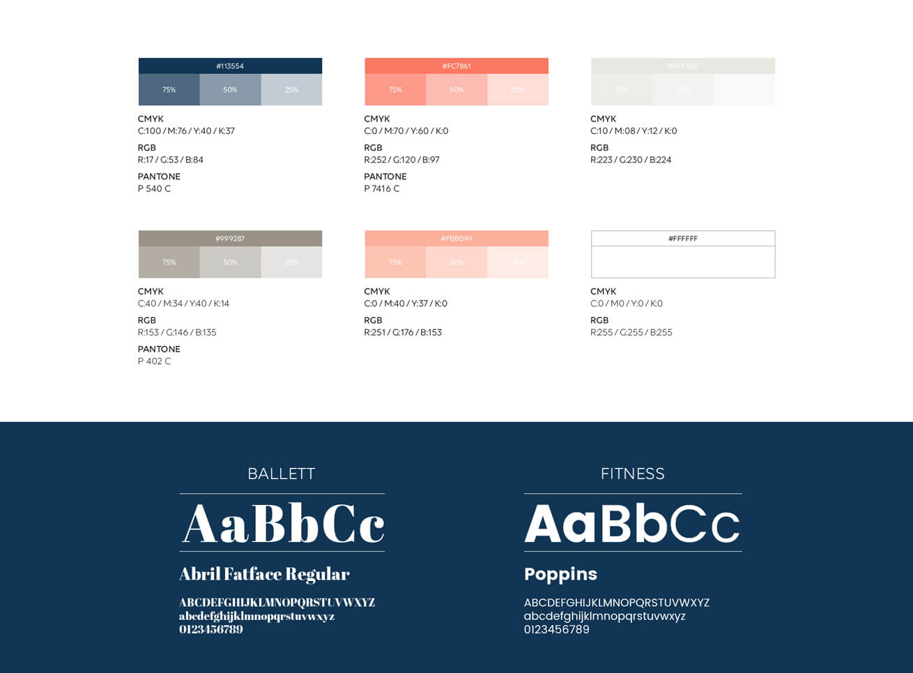Ballett und Fitness Academy Guideline Grafikdesign